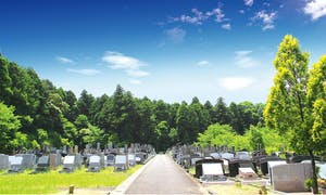 佐倉やすらぎの郷の画像