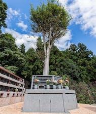 多摩聖地霊園 樹木葬・一般墓の画像