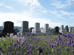 真駒内滝野霊園の画像
