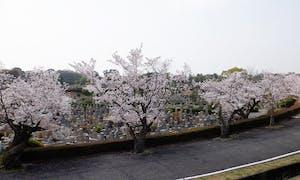 大阪市設 服部霊園の画像