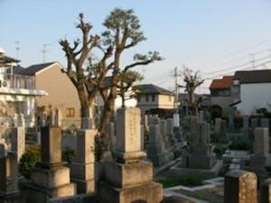 春日丘墓地の画像