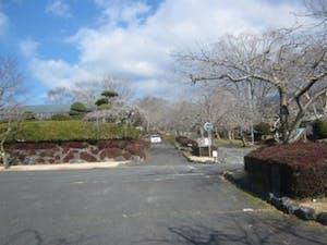 富士宮市営 朝霧霊園の画像