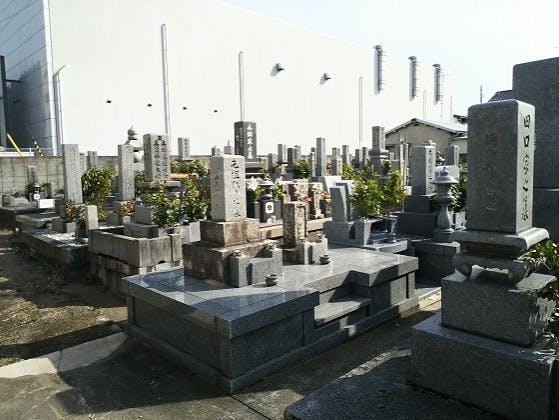 松山市営 小坂墓地