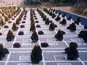 新居浜市第1平尾墓園の画像