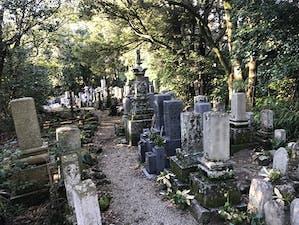 例幣墓地の画像