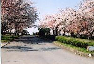 八戸市営 東霊園の画像