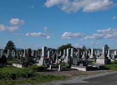 旭川市営 永山墓地の画像