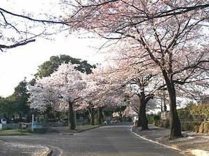 川崎市営 緑ヶ丘霊園(津田山霊園)の画像