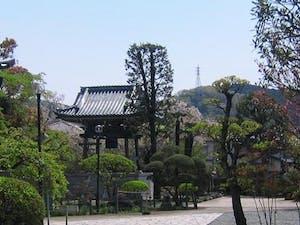 長谷山 海宝院の画像