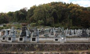 真蔵寺墓地の画像