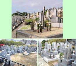 柏原国分ヶ丘墓苑の画像