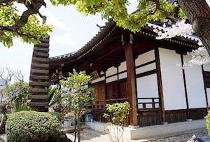 銀山寺墓地の画像
