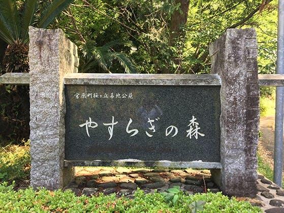 氷川町桜ケ丘墓地公苑(やすらぎの森)