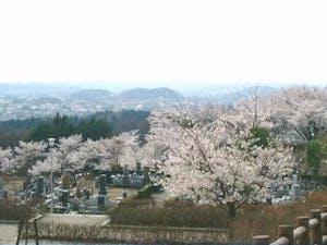 白河市営 羅漢山霊園の画像