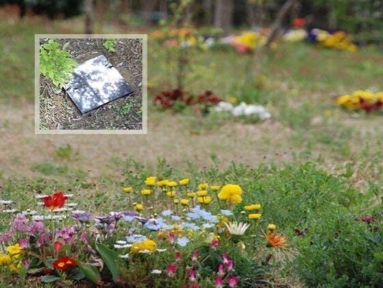 真光寺 里山の樹木葬