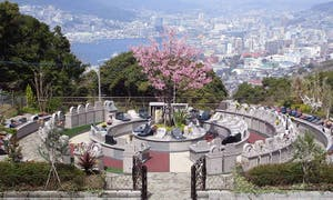 港ヶ丘パーク墓苑(樹木葬・一般墓)の画像