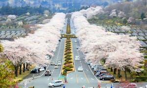 冨士霊園の画像