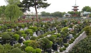 青葉園の画像