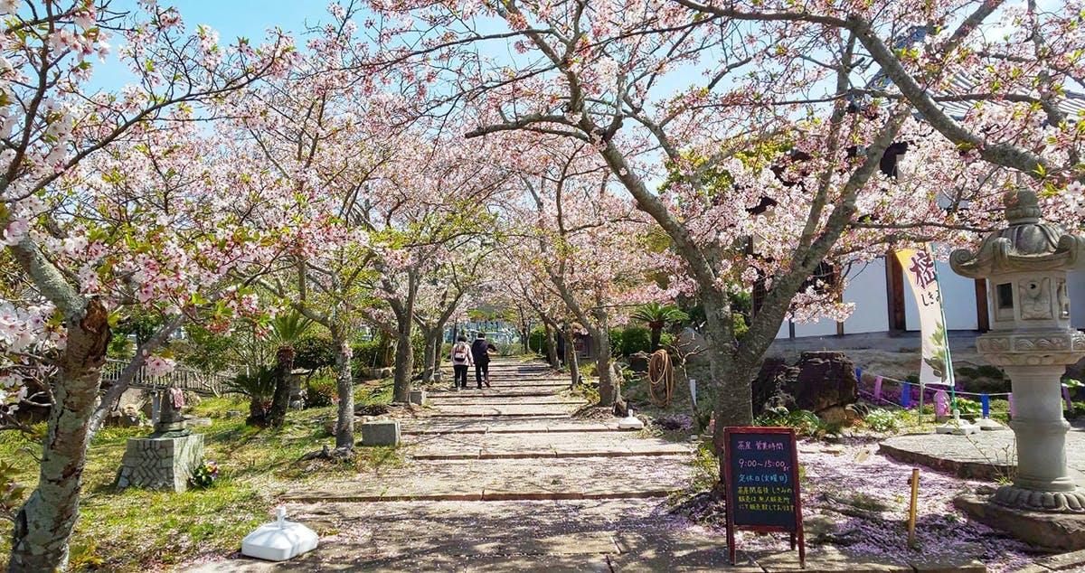 道後聖墓苑