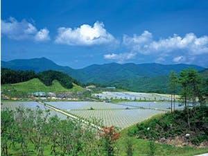 中国平和記念墓地公園の画像