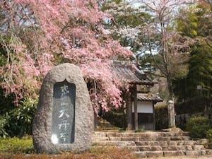 大舟寺霊園の画像