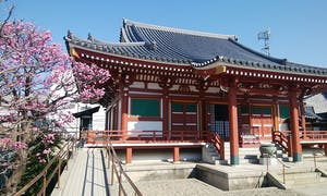 富光寺墓地の画像