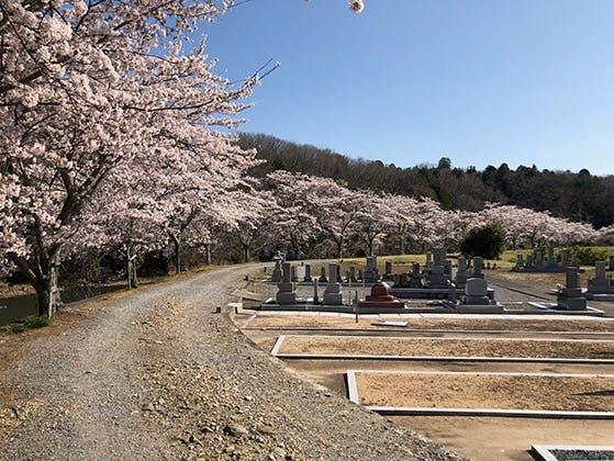 大川瀬霊園