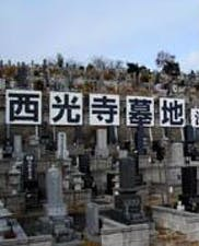 西光寺墓地の画像