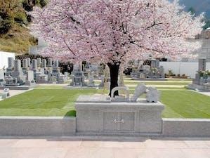 メモリアルパーク可部東の画像