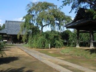 西林寺墓苑