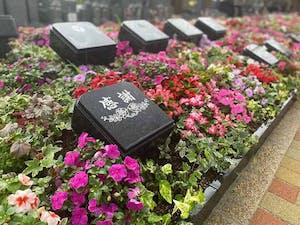 新上桂霊苑の画像