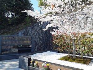 霊源皇寺墓苑・樹木葬の画像