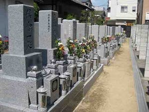 恩楽寺墓地の画像