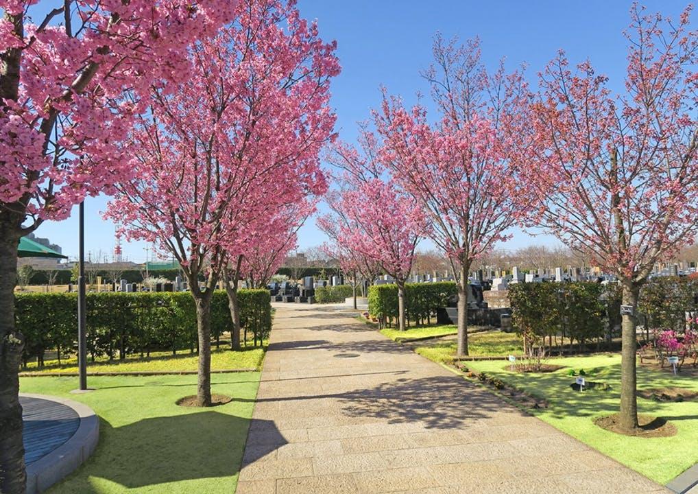 柏中央霊園