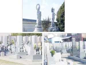 知元寺の画像