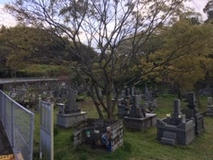 大分市営 駄ノ原墓地の画像