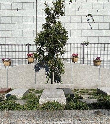 外苑こもれびの杜 樹木葬・永代供養墓