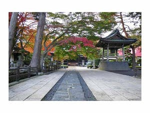 引接山 西方寺の画像
