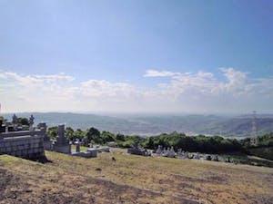 天空の郷有明墓園の画像