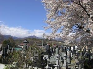 大雄寺墓苑(小諸善光寺)の画像