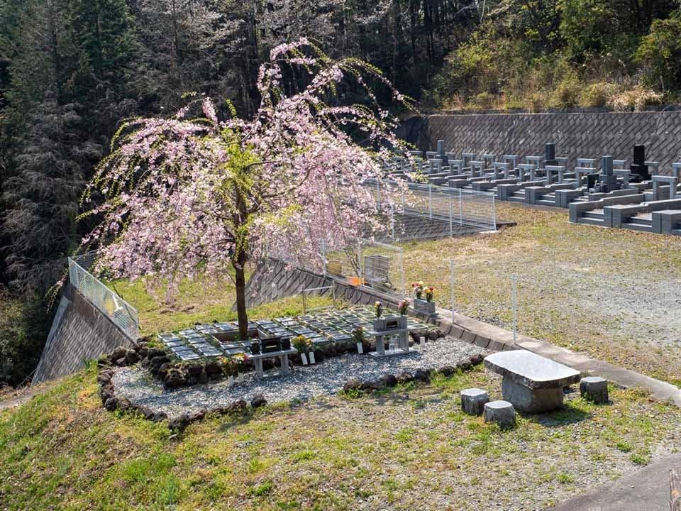 山名霊園 樹木葬墓地「チェリーブロッサム」