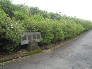 大津霊園の画像