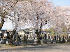 西光寺墓苑 (いつくしみの碑)の画像