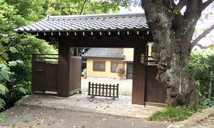 伝燈院 東山浄苑の画像