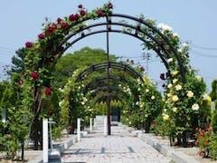 フジパーク霊園 新潟南の画像