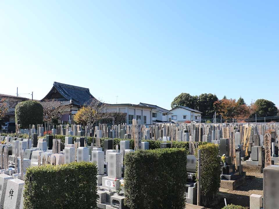 若松きすげ墓苑