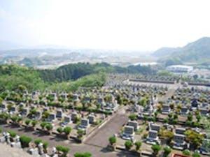 東部墓地公園の画像