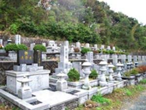 南部墓地公園の画像