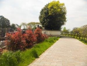天祥寺の画像