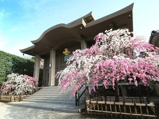 文京 小日向 本法寺